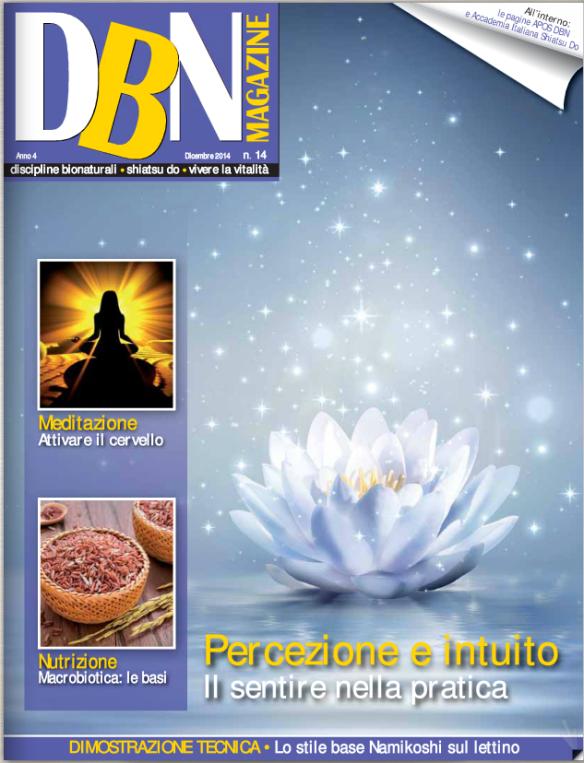 DBN n° 14